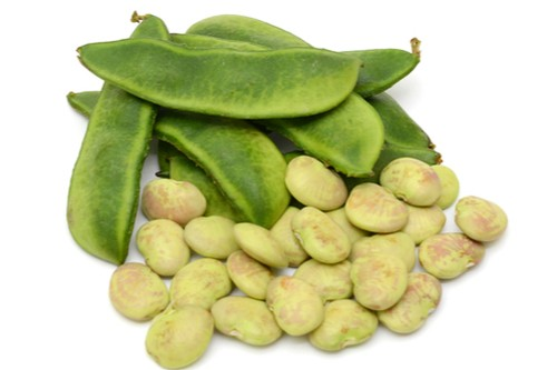 lima beans nutrition facts