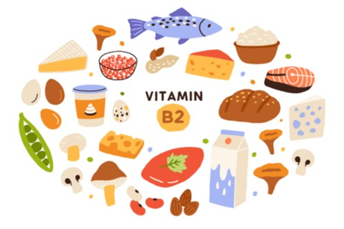 Riboflavin Food Sources and Benefits